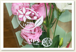 MPS Flower